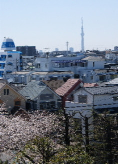 ウェルハイム・東京(介護付有料老人ホーム)の画像(6)