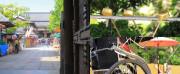 グレイプスガーデン西新井大師(サービス付き高齢者向け住宅)の画像(21)西新井大師