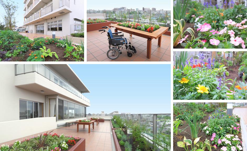 グレイプスガーデン西新井大師(サービス付き高齢者向け住宅)の画像(11)敷地内庭園