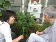 篠崎明生苑(介護付有料老人ホーム)の画像(2)