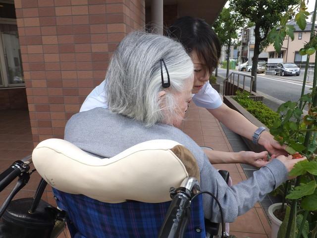 篠崎明生苑Ⅱ(介護付有料老人ホーム)の画像(5)