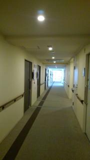 グレイプス川崎新町(サービス付き高齢者向け住宅)の画像(15)廊下