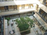 ニチイホームはるひ野Ⅱ番館(介護付有料老人ホーム)の画像(20)上階からの中庭