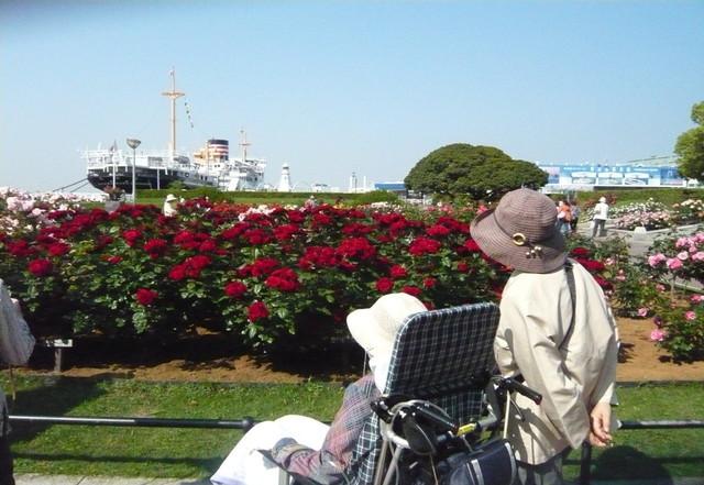らいふアシスト馬車道(介護付有料老人ホーム)の画像(9)