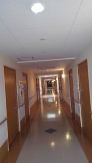 ココファン日吉(サービス付き高齢者向け住宅)の画像(16)共用廊下