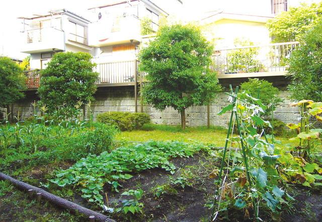 SOMPOケア ラヴィーレ緑園都市(介護付有料老人ホーム)の画像(16)