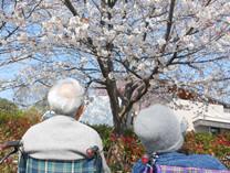 グッドタイムホーム・青葉田奈(介護付有料老人ホーム)の画像(3)