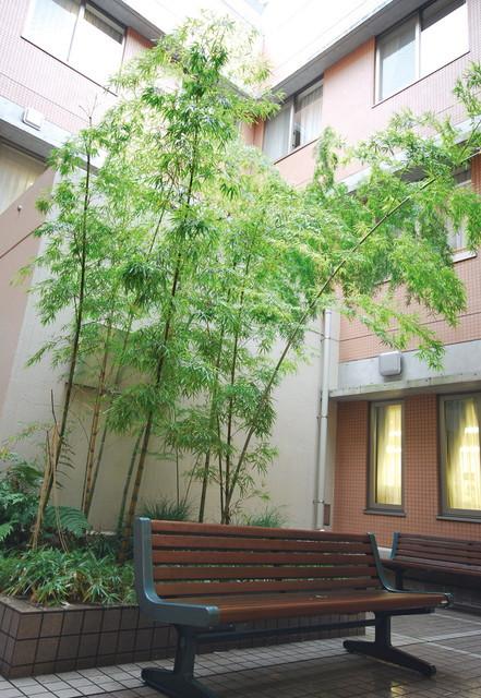 トレクォーレ横須賀(介護付有料老人ホーム)の画像(10)