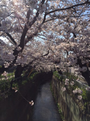 フローレンスケアホーム鎌倉(介護付有料老人ホーム)の画像(5)