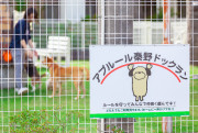 アプルール秦野(介護付有料老人ホーム)の画像(3)ドッグラン