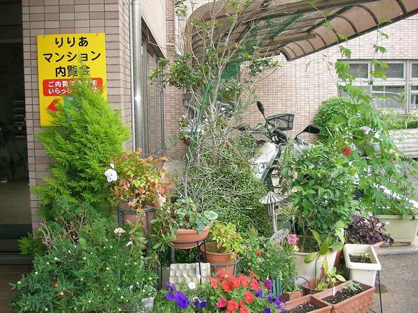 りりあマンション綱島樽町(サービス付き高齢者向け住宅)の画像(5)