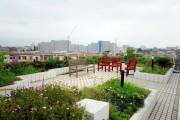 ボンセジュール千歳船橋(介護付有料老人ホーム(一般型特定施設入居者生活介護))の画像(8)屋上庭園