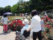 シルバーシティ聖蹟桜ヶ丘(介護付有料老人ホーム)の画像(16)