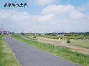 シルバーシティ聖蹟桜ヶ丘(介護付有料老人ホーム)の画像(30)